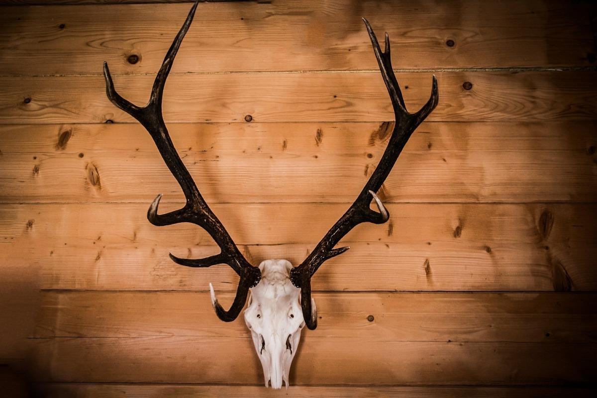 Was ist eine Jägerklause?