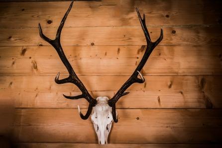 Handelt es sich um eine Jagdhütte?